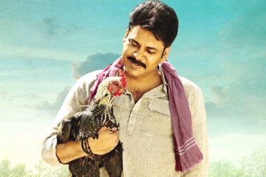 Katamarayudu brings huge figures on Business